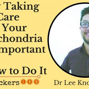 Why Taking Care of Your Mitochondria is So Important (+ How To Do It) • Dr Lee Know ND
