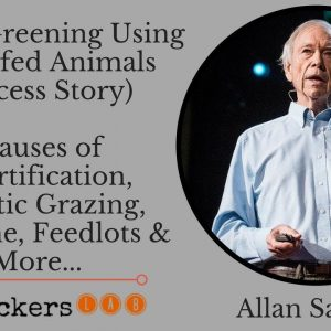 Using Grassfed Animals for Desert Greening (Success Story) • Allan Savory