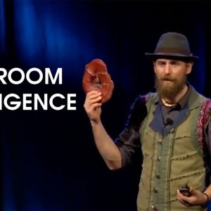 Yarrow Willard: Mushroom Intelligence